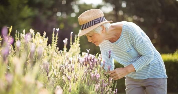 Badante calo olfatto anziani